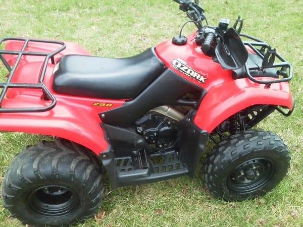 2003 Suzuki Ozark 250 ($1600)