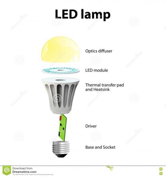 Basic Components Of Led Light Bulbs Stock Vector