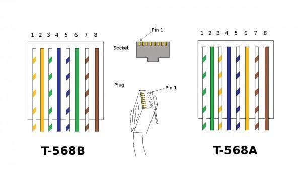 Ethernet 568b Wiring Diagram