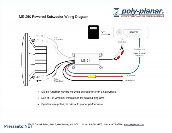 Www The12volt Com Wiring Diagram Thoritsolutions Bright Subwoofer