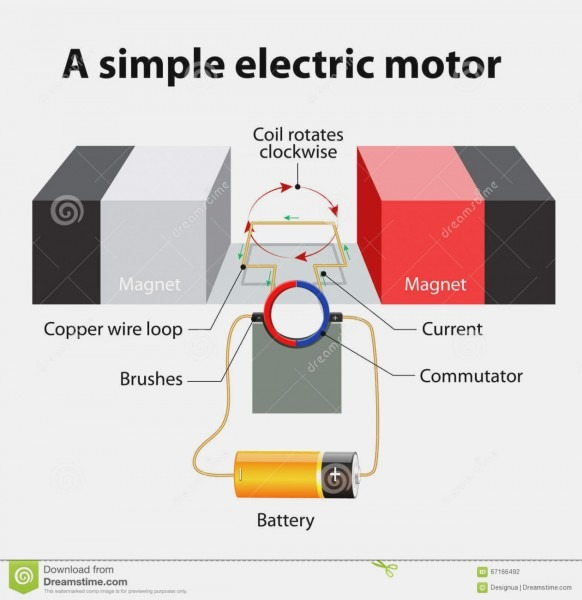 Five Facts About Electric Motor Parts