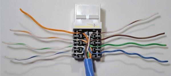 Rj45 Wall Box Wiring Diagram