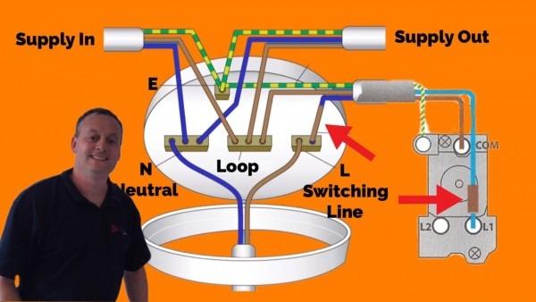 3 Plate Loop
