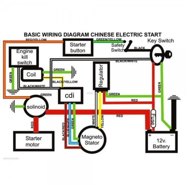 Diagram 49cc Mini Quad Wiring Diagram Full Version Hd Quality Wiring Diagram Diagramstane Abacusfirenze It