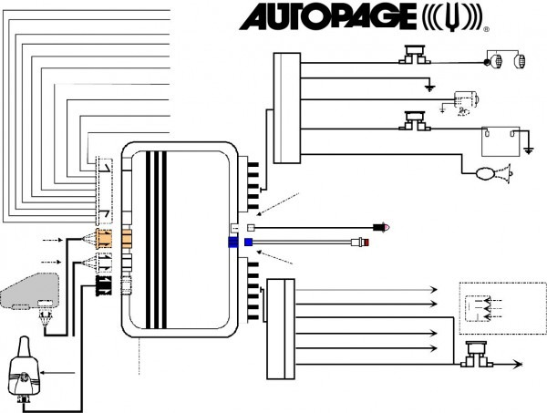 Commando Car Alarm Wiring Harness