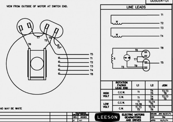 Leeson Motor Wiring Diagram 12 Leads