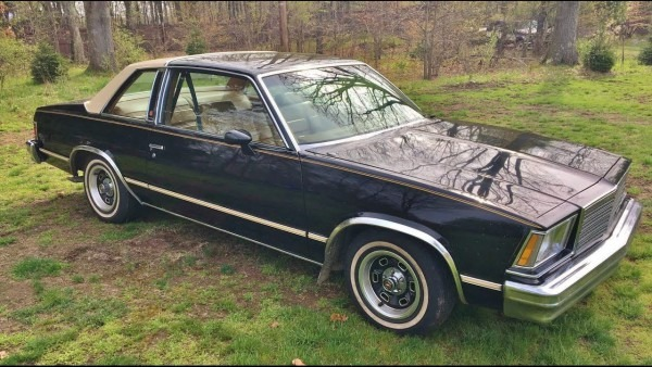 1979 Chevrolet Malibu Classic For Sale