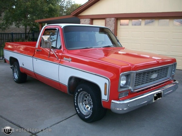 1974 Chevrolet Pickup Truck  38 Years Old  In Better Shape Than