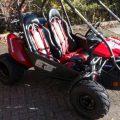 Hammerhead 150cc Buggy